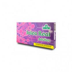 Sotya Jalea Real Adulto 10 ampollas